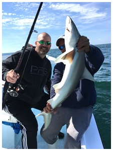 Daytona Beach shark fishing trip