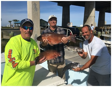 More fish from an offshore fishing trip in Daytona Beach